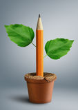 Idea creative concept, pencil with leaves grow from pot Royalty Free Stock Image