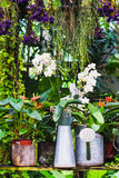 Idea de la decoración del jardín usando la regadera Fotos de archivo