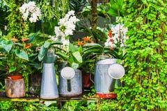 Idea de la decoración del jardín usando la regadera Foto de archivo
