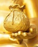 Idea del concepto de la buena suerte, de la felicidad, y de la vida rica sana Foto de archivo libre de regalías