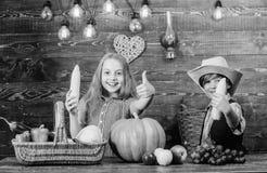 Idea del festival de la ca?da de la escuela primaria Celebre el festival de la cosecha Fondo de madera de las verduras de las maz foto de archivo