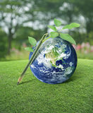 Idea for earth, Elements of this image furnished by NASA royalty free stock photography