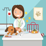 The idea of female veterinarian curing illustration Royalty Free Stock Photo