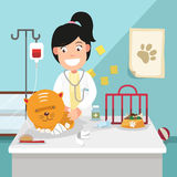The idea of female veterinarian curing illustration Stock Photos