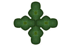 Idea form leaf. Stock Images