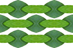 Idea form leaf. Royalty Free Stock Images