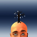 Idea growth Stock Photography