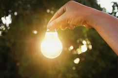 Idea hand holding light bulb concept solar of energy. In nature Royalty Free Stock Photography