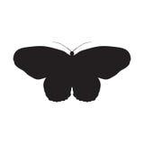 Idea Leuconoe de la mariposa Cometa de papel Bosquejo de Foto de archivo libre de regalías