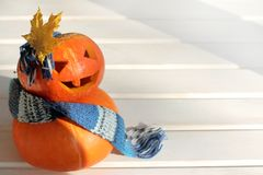 Halloween fashion show. Idea manicure of orange pumpkins in a warm scarf and bow of a maple leaf Stock Photos