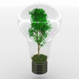 Idea verde Foto de archivo libre de regalías