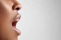 Ideaal vrouwen` s profiel met open mond stock foto