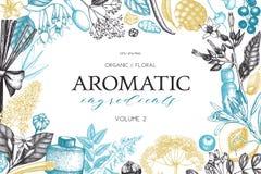 Ideal für Gebrauch in Ihrer Auslegung Handgezogene Parfümerie und Kosmetikbestandteilillustration Aromatischer und Heilpflanzeent vektor abbildung