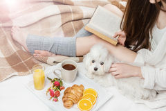 Ideal rest to relax on the weekend. Woman Sitting on the bed reading a book and caressed the white lapdog dog Stock Photo