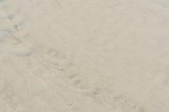 ideal sandtextur för bakgrunder Royaltyfri Bild