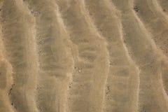 ideal sandtextur för bakgrunder Brun sand Bakgrund från fin sand Arkivbilder