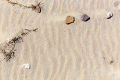 ideal sandtextur för bakgrunder Sandig strand för bakgrund Arkivbild