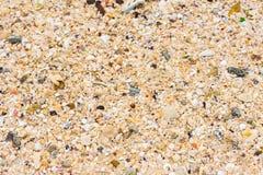ideal sandtextur för bakgrunder Sandig strand för bakgrund Top beskådar Närbild Royaltyfri Foto