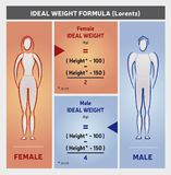 Ideal Weight Formula Illustration with Female and Male Silhouettes. In Blue and Orange Colors Royalty Free Stock Images