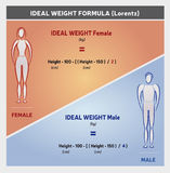 Ideal Weight Formula Illustration with Female and Male Silhouettes. In Blue and Orange Colors Royalty Free Stock Image