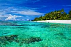 Idealer schnorchelnder Strand mit Koralle und Palmen Stockfoto