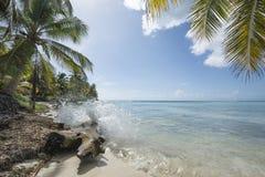 Idealic Caraïbische kustlijn met plons Stock Afbeelding