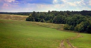 Idealistic summer landscape Stock Photos