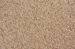 idealna konsystencja tło piasku Piasek na Bałtyckiej plaży Obraz Royalty Free