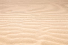 idealna konsystencja tło piasku Obraz Royalty Free