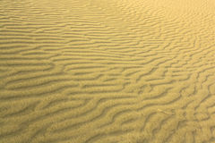 idealna konsystencja tło piasku Obraz Stock