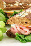 idealny gastronomii kanapka Zdjęcia Stock
