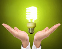 Ideas bulb light on  hand Royalty Free Stock Photography