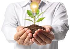Ideas bulb light in the hand Stock Photos