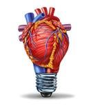 Ideas de la salud del corazón Imagen de archivo libre de regalías