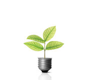 Energy saving light bulb. Ideas, energy saving light bulb royalty free stock photo