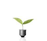 Energy saving light bulb. Ideas, energy saving light bulb stock image