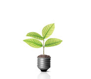 Energy saving light bulb. Ideas, energy saving light bulb stock photos