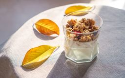 Greek yoghurt with granola, dried berries in glass and yellow leaves. Gray background with rustic style cloth. Top view copy space royalty free stock photography