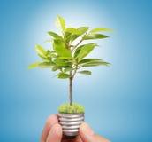 Ideas light bulb in hand Stock Photos