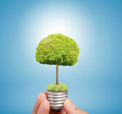 Ideas light bulb in hand Royalty Free Stock Photography