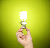 Ideas light bulb in  hand Royalty Free Stock Image
