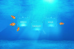 Ideas, Target, Sale. Marketing concept illustrated by claw fish underwater watching banners with words: ideas, target, sale Royalty Free Stock Photo