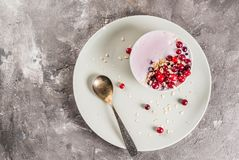Cranberry smoothie with oats royalty free stock images