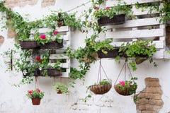 Idee del pallet per fare il giardinaggio Fotografie Stock Libere da Diritti