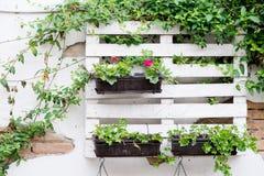 Idee del pallet per fare il giardinaggio Fotografia Stock Libera da Diritti