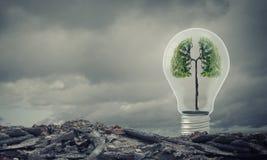 Idee di ecologia immagini stock libere da diritti