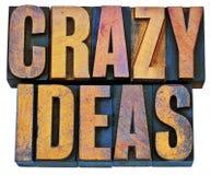 Idee pazze nel tipo di legno dello scritto tipografico Immagini Stock