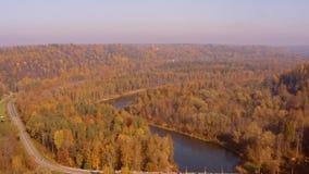 Ideia aérea bonita da manhã do outono dourado em Sigulda, Letónia filme