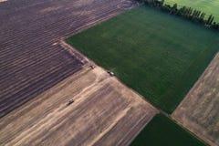 Ideia aérea da ceifeira processada campo Ajardinando o teste padrão dos campos segados e o verde plantados recentemente Imagem de Stock