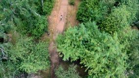 Ideia aérea da ciclagem no parque Vertical, invertido video estoque